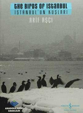 İstanbul'un Kuşları / The Birds of Istanbul